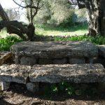 Reutilización de piedras del poblado Torretrencada 2