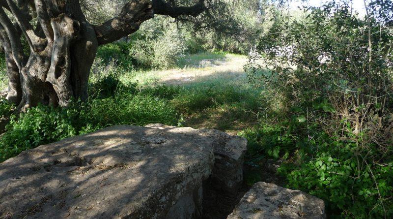 Reutilización de piedras del poblado Torretrencada