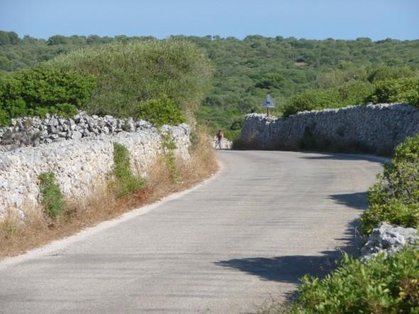 Camino flanqueado por muros de Paret Seca