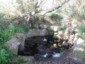 Charca de recogida de agua de Torretrencada