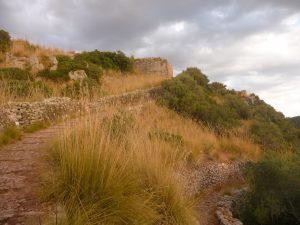 Camino con muro de paret seca