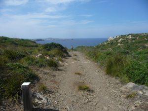 Camino hacia Savinar
