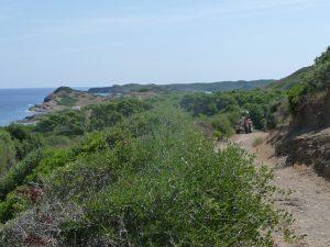 Cami de Cavalls hacia Cala Rambles desde Favàritx